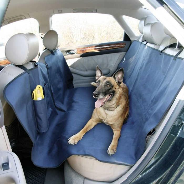 Zaščita za avto