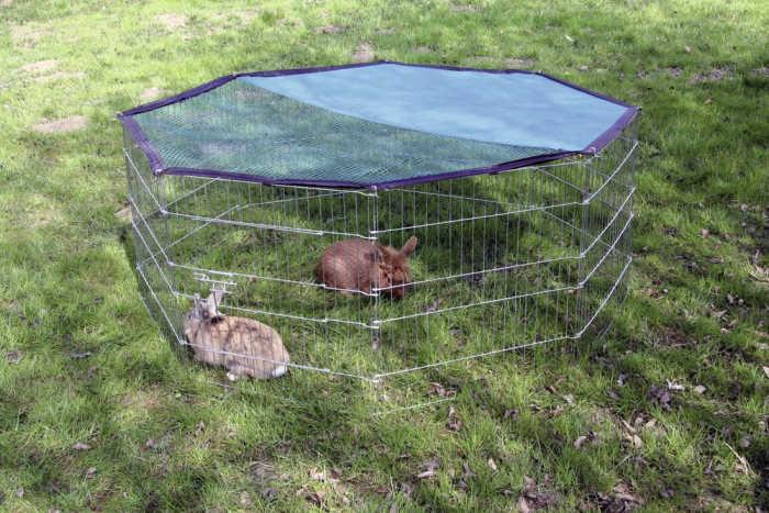Ograda za glodavce in pasje mladiče