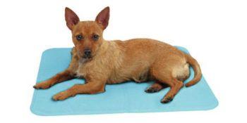 Hladilna blazina za pse Cool-Relax - s funkcijo hlajenja