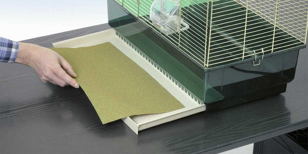 Peščeni tepih za ptice