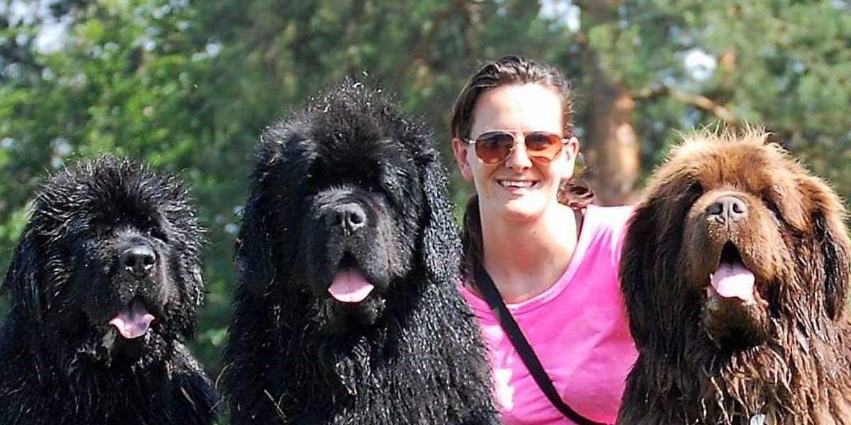Črno-bela pasja