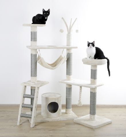praskalnik za mačko