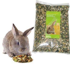 Hrana za zajčke