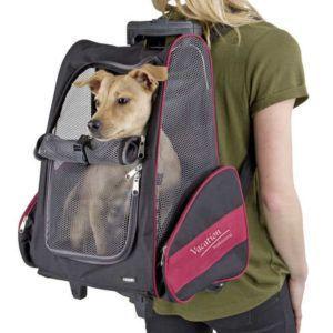 Prenosni nahrbtnik za pse