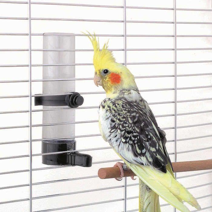 Oprema za ptice - napajalnik