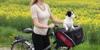 Pes ali mačka na poti s transporterji Vacation Professional