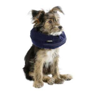 Napihljiv medicinski ovratnik za male pse