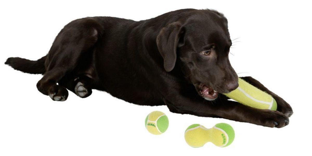 Pasje igrače s tenis žogicami