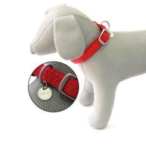 Rdeča ovratnica za psa