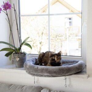 Okenska postelja za mačke