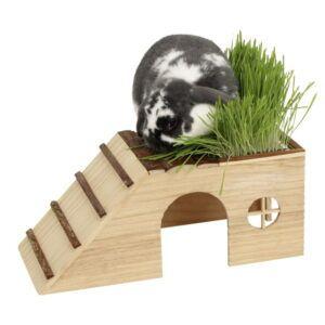 Hišica za glodavce s klančino in zasaditvijo