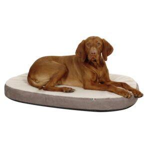 Ovalna pasja blazina s spominsko peno