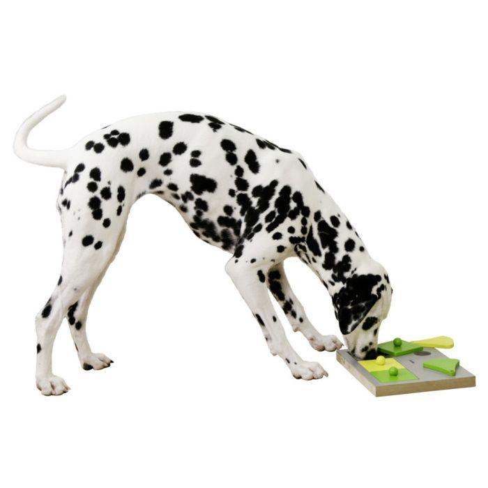 Miselna igrača za psa
