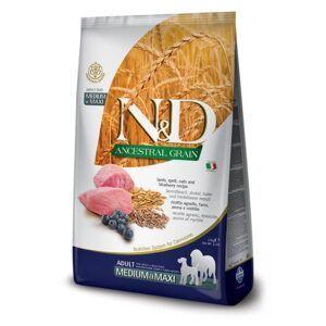 N&D Ancestral Grain Medium & Maxi Lamb