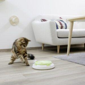 Interaktivna igrača za mačke