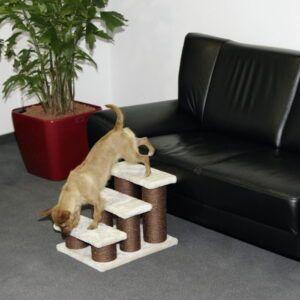 Stopnice za psa