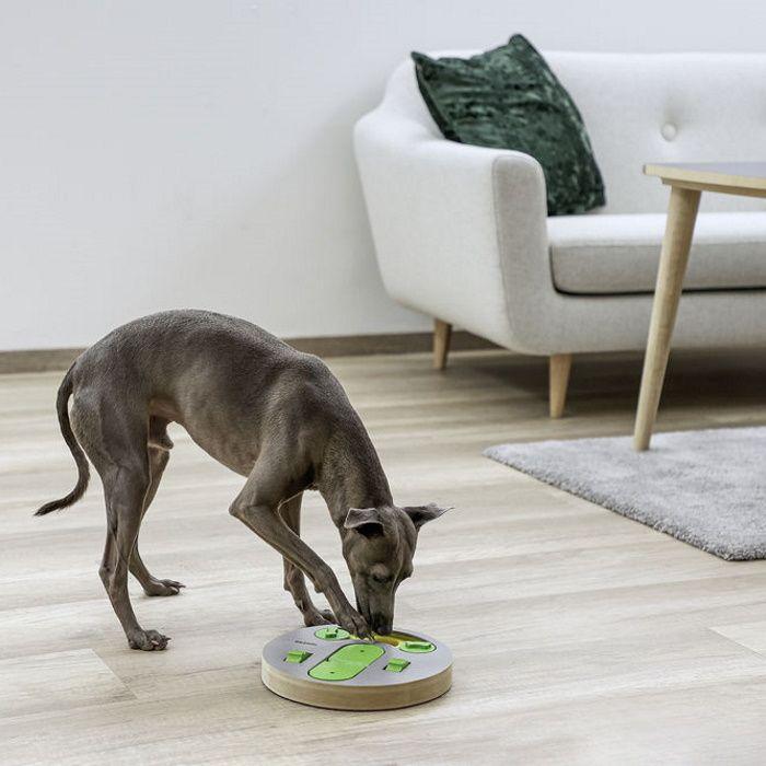 Miselne igrače za pse